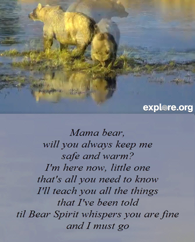 Holly_Cub_Bear_Poem