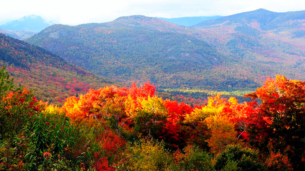 autumn leaves changing color in new hampshire