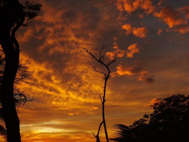 Costa Rican Coast by Bernhard Rosner