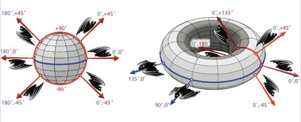 3d bat navigation