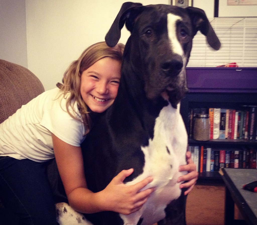 Ava's really got a hold on her greatest Dane Ash.