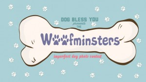 Woofminsters Celebrate Dogs' Perfect Imperfections