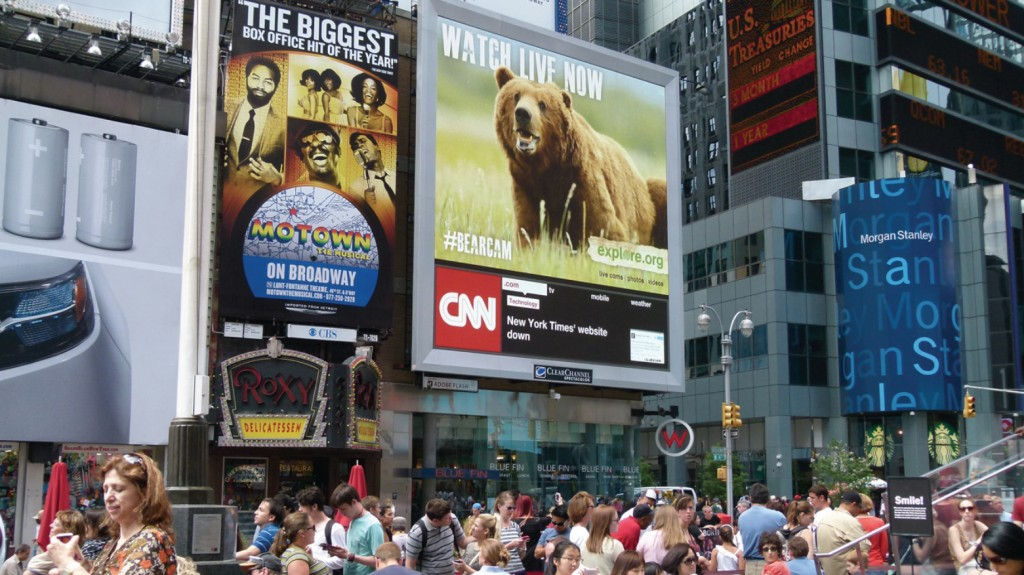 Explore.org and the #bearcam featured in Times Square