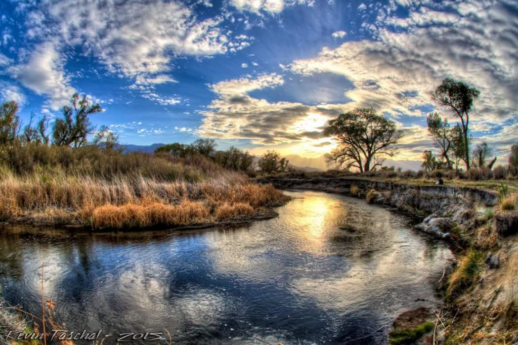 Owens River by Abbie Paschal