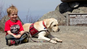 Service Dog Asia is a Rock for Six Year Old Boy