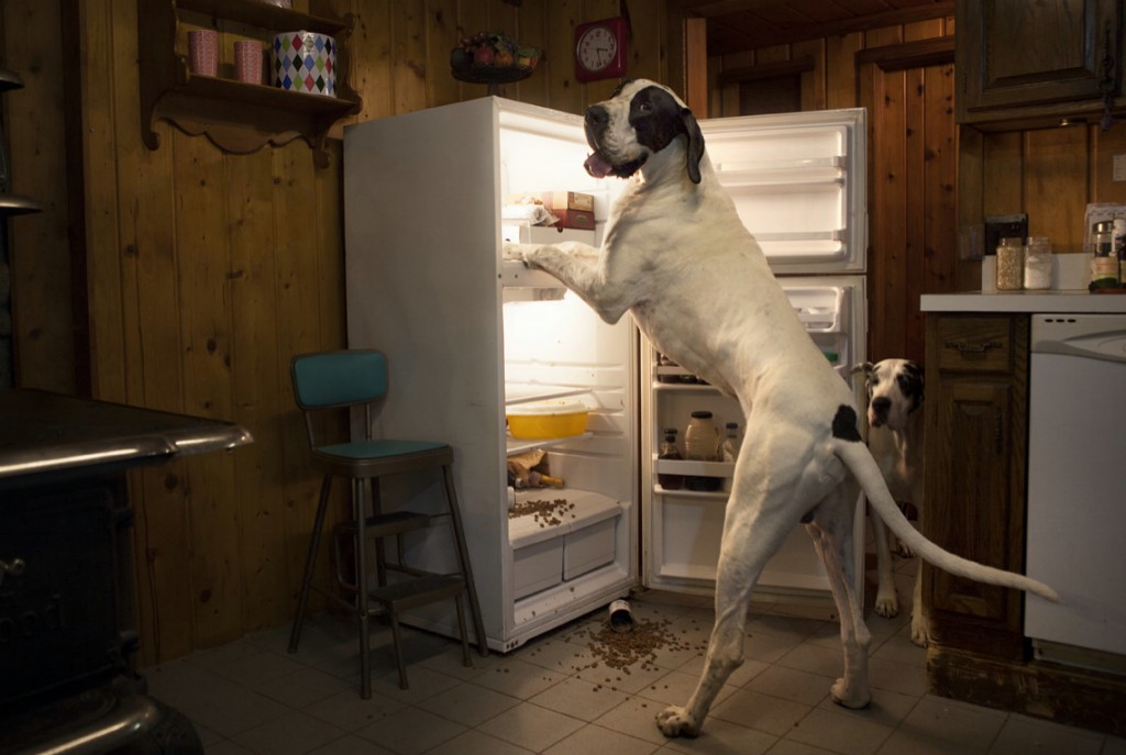 """Walter """"helps"""" in the kitchen."""