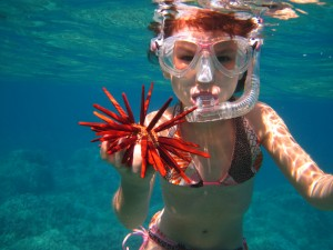 Young Snorkeler by Claire Fackler