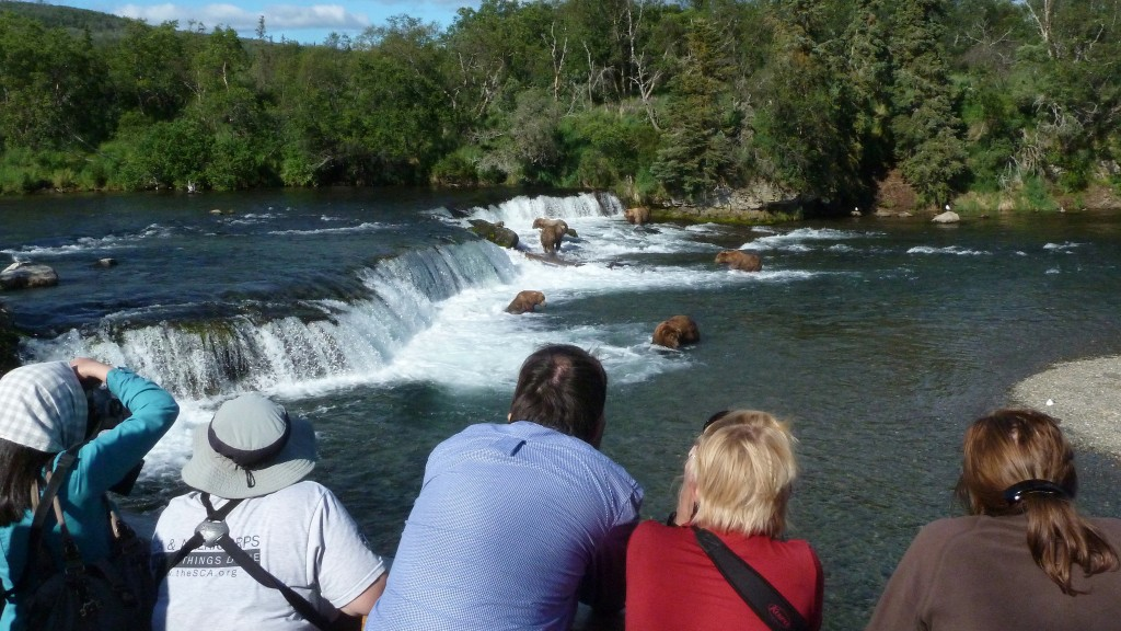 Bears and bear watchers at Brooks Falls (NPS/M. Fitz)