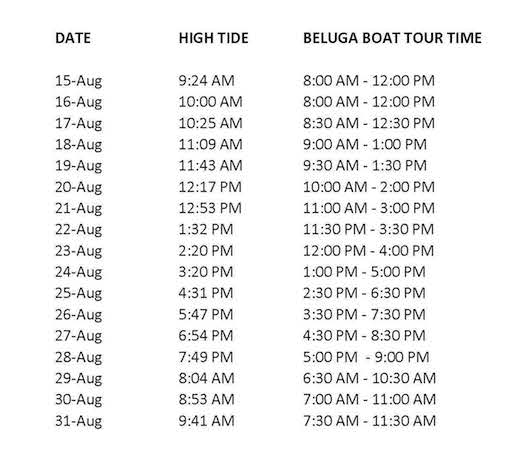 Beluga boat Tour times only