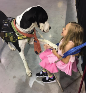 Communication is critical between service dogs and partners