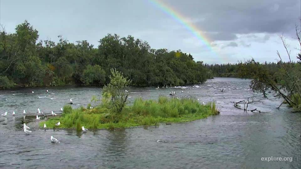 Beautiful rainbow over the lower river at Katmai National Park | Snapshot by Tina Wolney Finn‎