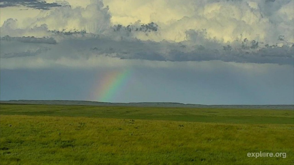 Beautiful rainbow captured from our bison cam | Snapshot by kml