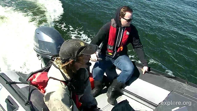 Aidan commands the Beluga Boat
