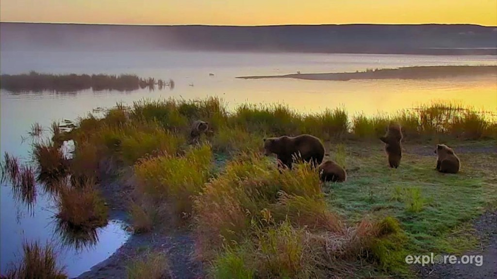 Catching the sunrise at Katmai | Snapshot by LesAnn