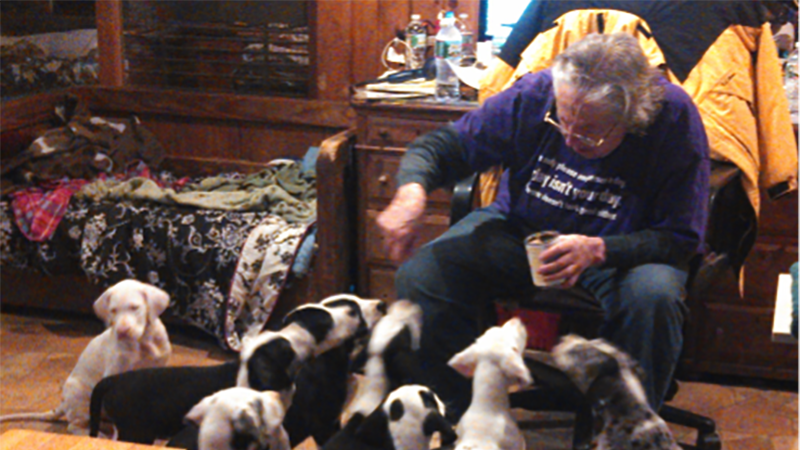 Carlene White trains 7-week old pups to be service dogs.