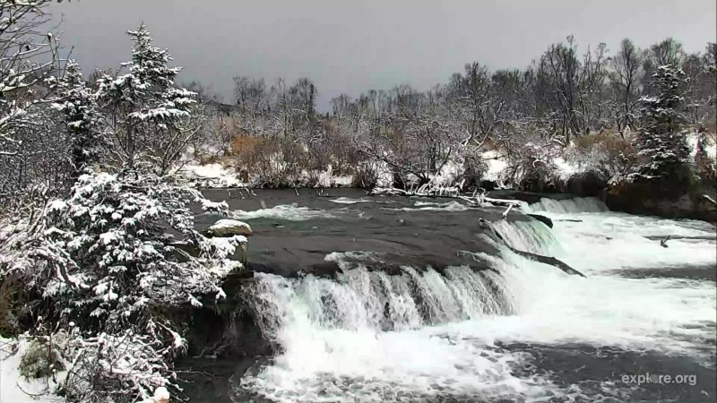 snow covered Brooks Falls