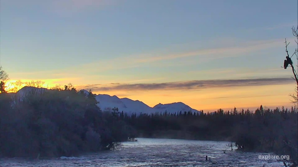 Sunrise over Brooks River