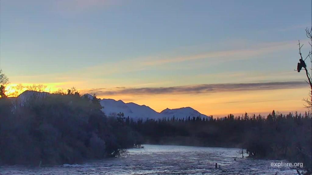 Sunrise over Brooks River