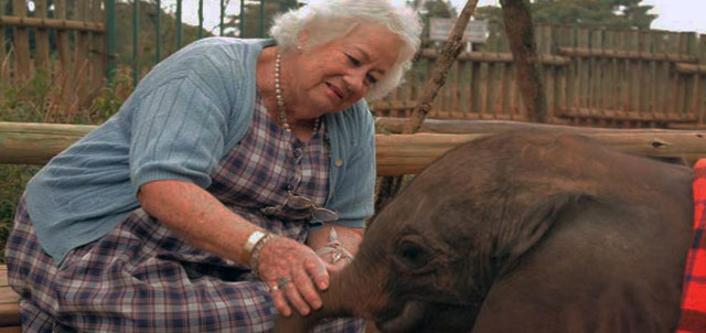 Dame Daphne Sheldrick, Photo Courtesy