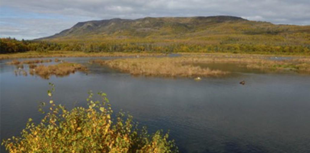 brooks river blog
