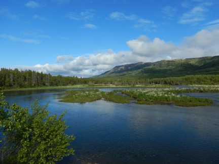 brooks river blog 1