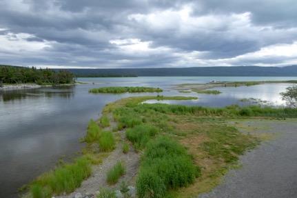 brooks river blog 2