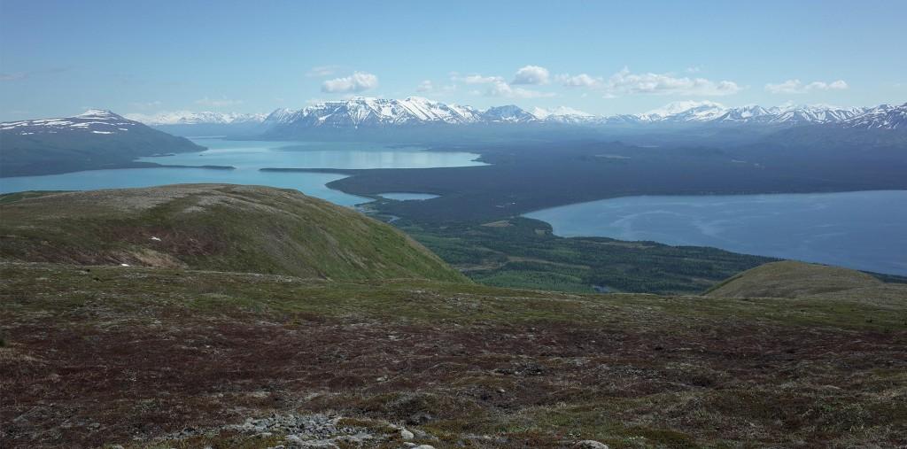 dumpling mountain blog
