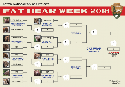 Katmai Fat Bear Week Bracket 2018 copy