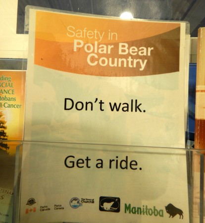 13 polar bear warning sign_11182018