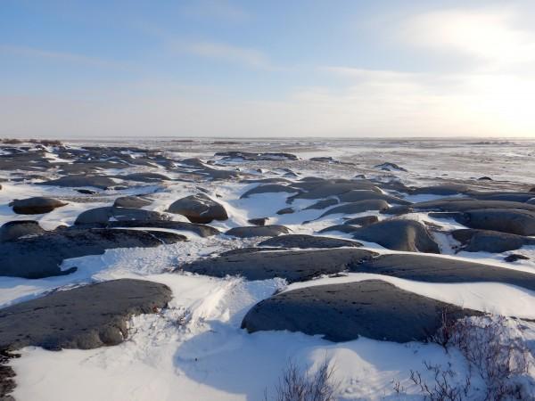 3 tundra east of Churchill_11182018_4