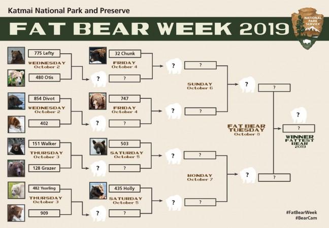 Fat Bear Week Bracekt 2019