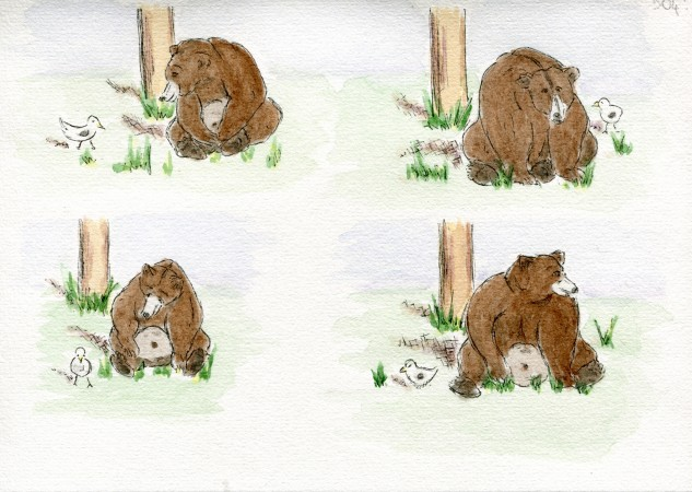 Bear Cam Fan Art - Amanda @a21981
