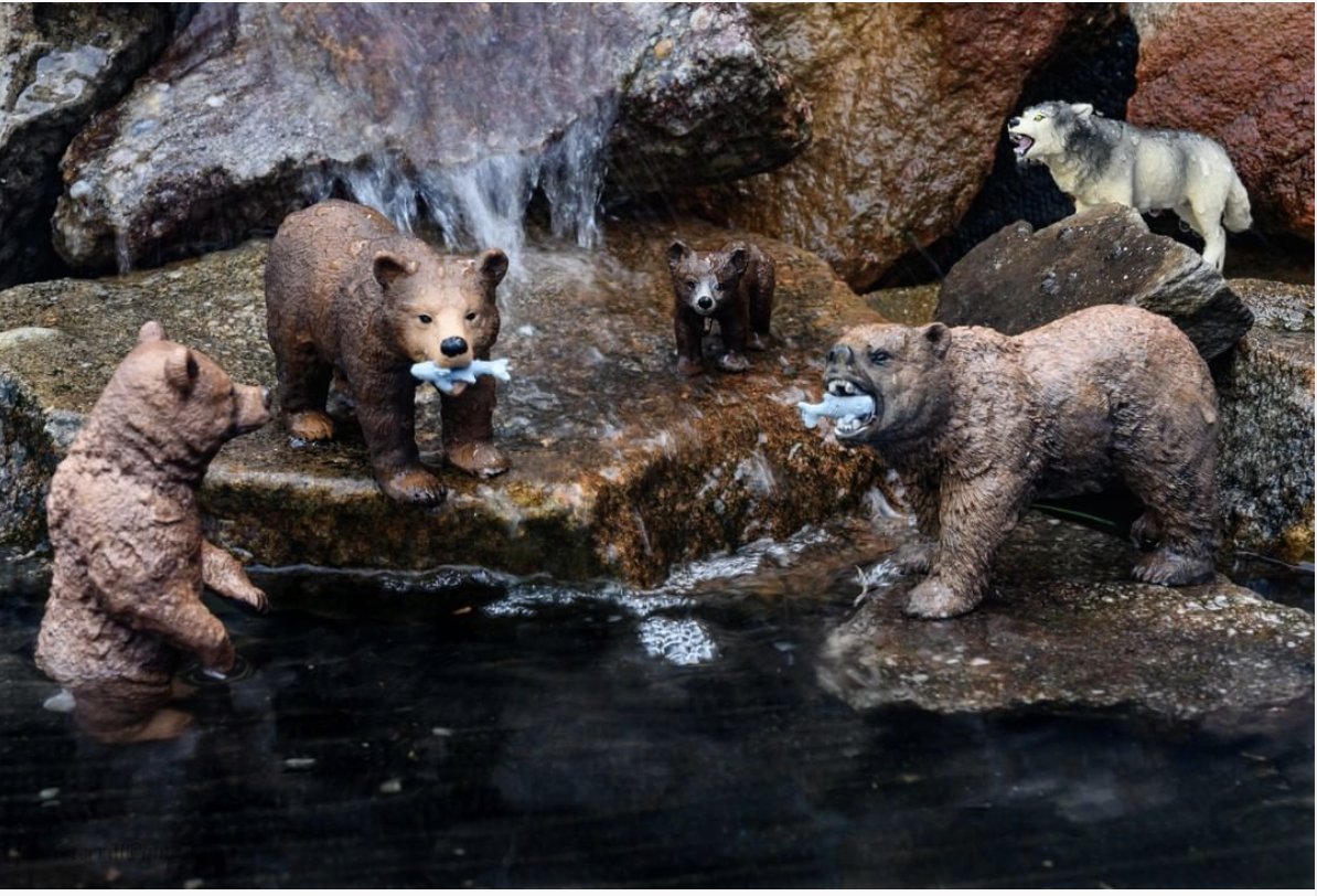 Bear diorama by @janiceterrill2019